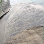 Sand stream estuary 2