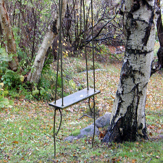 The swing and the birch tree