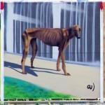 Pariah dog, Bulgaria
