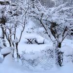 Snow gateway 3