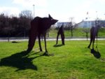 Landvetter wolves