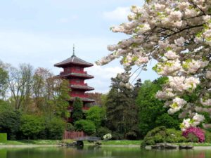 Royal Pagoda and blossom