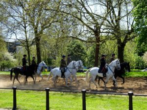 London green: Cavalry horses exercising on Rotten Row in Hyde Park