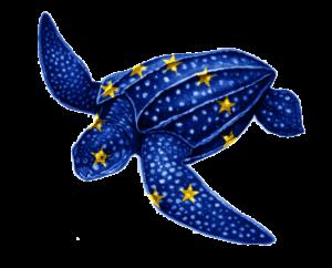 EU turtle