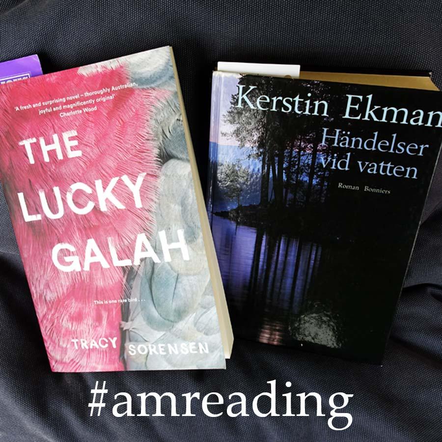 Amreading Galah and Händelser