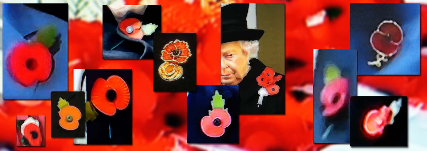 Flanders Fields - Poppies header
