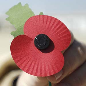 Flanders Fields: Poppy Appeal Photo from Wikimedia