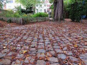 Cobbles and fallen leaves