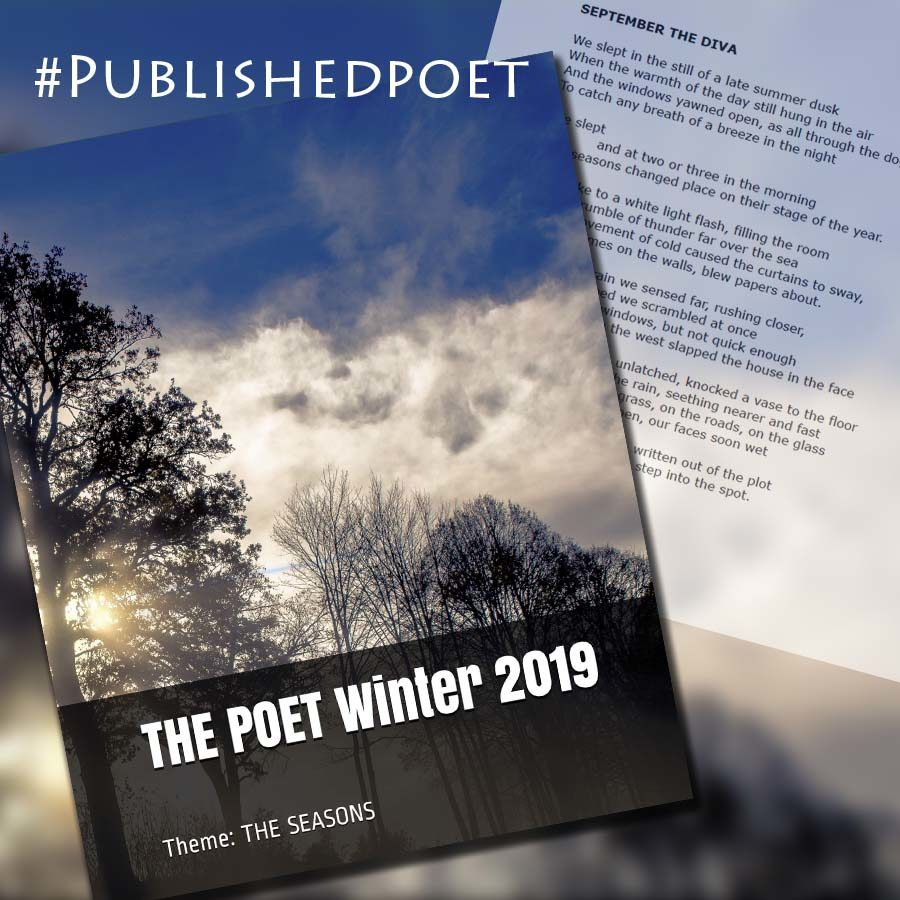 Cover of The Poet magazine - Winter 2019