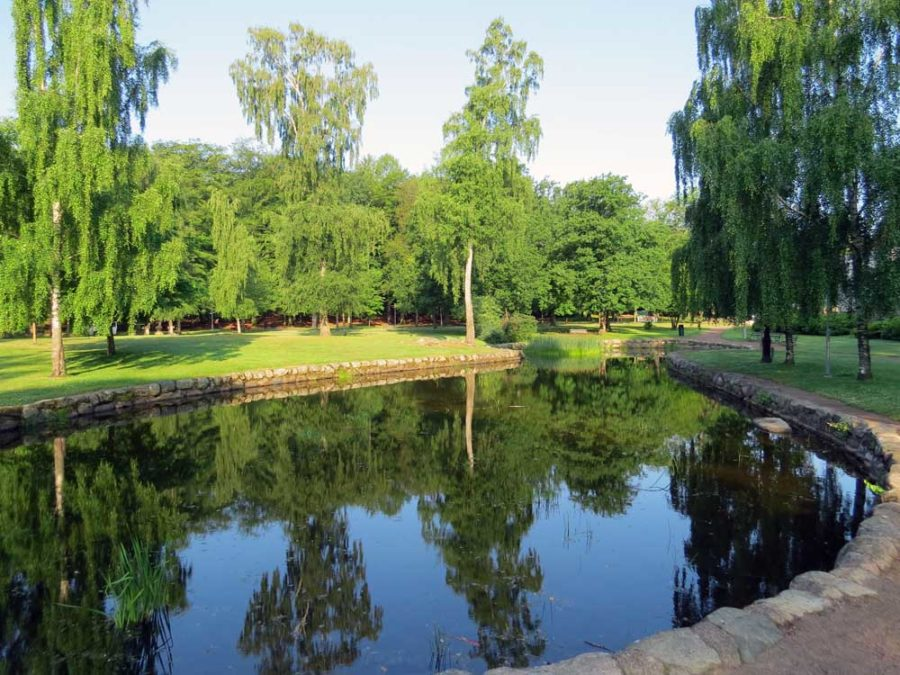 Reflective pond in Keillers Park, Ramberget