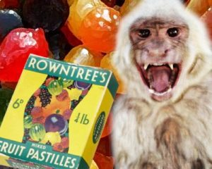 Monkey trauma: this one with an old Fruit Pastilles box with green and white lettering
