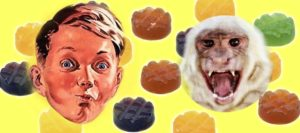 Monkey trauma header