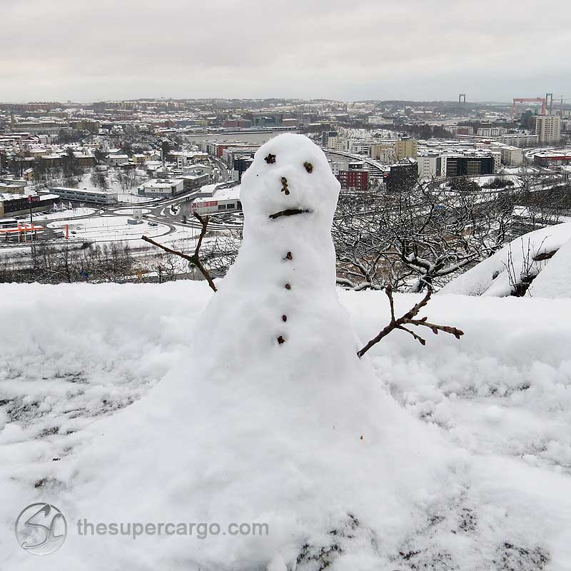 A surprised snowman on guard