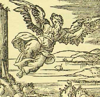 Daedalos in flight