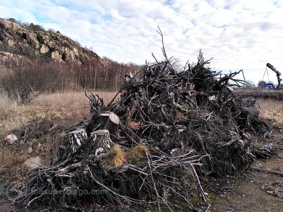 A pile of grubbed up tree stumps echo in shape the slopes of Ramberget seen behind