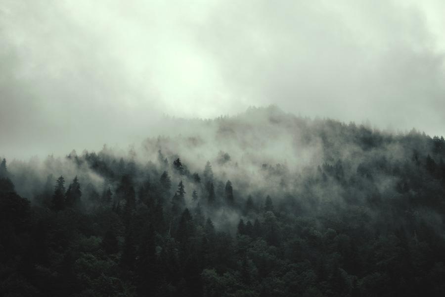 Autumn Haunted Cinquain: Misty Landscape